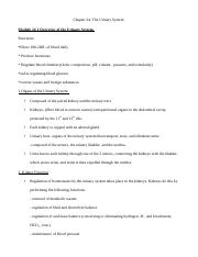 Chapter 24 notes outline