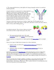 The immunoglobulin heavy chain (IgH) is the large polypeptide subunit of an antibody (immunoglobulin