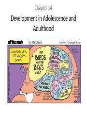 Ch 14 - Development in Adolescence and Adulthood notes.ppt