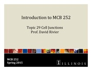 MCB 252 Topic 29 Cell Junctions Su2015