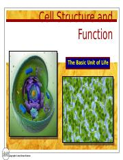 Cell_Structure_PowerPoint (2).pptx