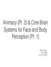 week3_day1_animacy2_and_face_body_ccle