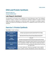 DNA and Protein Synthesis.docx