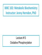 Lecture 13 Oxidative Phosphorylation.pdf
