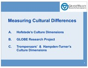 Measuring Cultural Differences - Hofstede