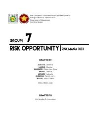 Risk-Management-Report-Grp-7.pdf