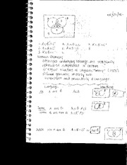 Class Notes Norman Anomsky