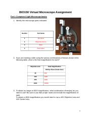 BIO150 Week 2 Virtual Microscope Assignment.docx