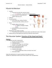 Lecture 13, 14 Muscular System Head and Neck .docx