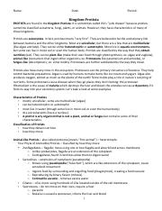 Protists COLORING WORKSHEET pdf - Name Date Period Kingdom