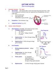 Notes- Electrocardiography