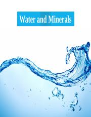 7. Water and minerals new powerpoint