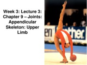 Z331 Fall 2010 Ecampus Week 3 Joints Lecture 3 Upper Limb Posted