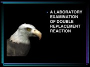 labexamofdoublereplacementreaction