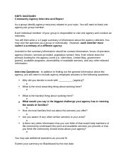 Community Agency Interview report.docx