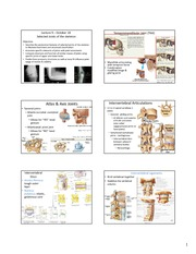 Lecture_9-11_Z331_Joints-PGirdle-SpineMore
