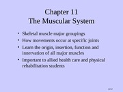 Tortora - Chapter 11 - The Muscular System
