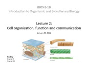 Lecture 2 - Cell organization function and communication