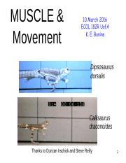 182-KB-Muscle&Movement_sp2016-0310post.pdf