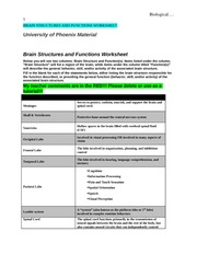 psy 340 biological psychology worksheet Psy 340 entire course psy 340 week 1 individual assignment biological psychology worksheet complete the university of phoenix material: biological psychology worksheet, located on your student website.