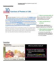 Cells_Activity_10