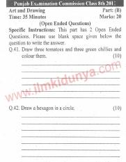 Punjab Examination Commission 8th Class Past Paper 2011 Art and Drawing Part B English Version
