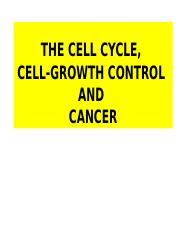 THE CELL CYCLE,.pptx