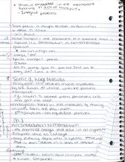 CHM 141 Integral Proteins Notes