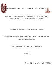 Proyecto-Ansys