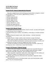 Module 2 DBA & Exam Review (1).docx