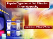 Gel Filtration Chromatography and Pepsin Digestion_2014