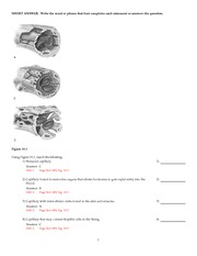Ch_11_answers - Essentials of Anatomy and Physiology 9e ...