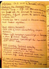 ch 3 notes on the damaged brain