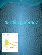Neurobiology of exercise.pptx