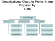 project_org_chart