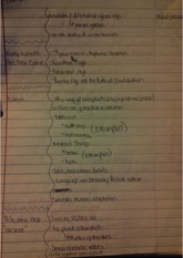 Rise of Civilization Notes