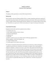 strawberry DNA lab report-2.pdf - \u200b \u200b Student ...