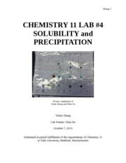 Lab4.Solubility and Precipitation.docx