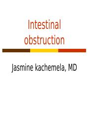 INTESTINAL OBSTRUCTION.ppt