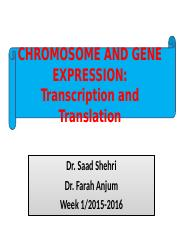 Lecture 1b, Chromosomes & Genes, 15-16.pptx