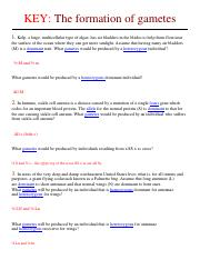 KEY_-_Practice_Problems_for_Genetcis_Test