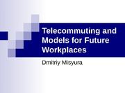 Telecommuting and Models for Future Workplaces