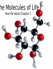 Bisc207+HLWchapter2+molecules_Fall2013 (2)