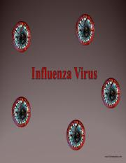 Influenza-Virus-Student.ppt