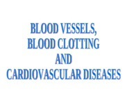 Blood Vessels Lecture