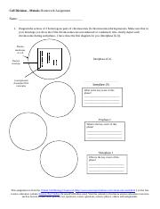 Cell-Division-Meiosis-Biology-Homework-Assignment-VCBC.doc ...