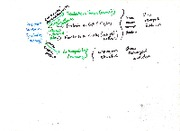 Notes on Divergent and Convergent Evoltuion Flow Chart