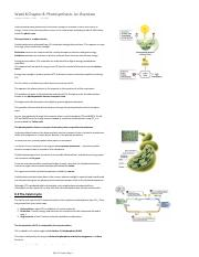 BIO 281 Week 8 Chapter 8 Photosynthesis An Overview.pdf