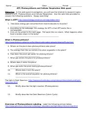photosynthesis-cell-respiration-webquest-1-1amhmoi 3.doc