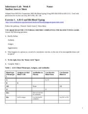 experiment 4 blood typing experiment blood typing is an. Black Bedroom Furniture Sets. Home Design Ideas